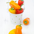 Mix of fresh colorful sweet peppers in a bucket — Stockfoto