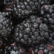 Stock Photo: Fresh blackberry background, horizontal, selective focus