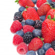Close-up of assorted fresh berries isolated on a white — Stock Photo
