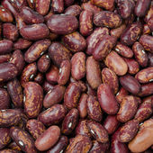 Red beans background — Stock Photo
