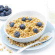 Homemade muesli, bowl of blueberries and glass of milk on white — Stock Photo