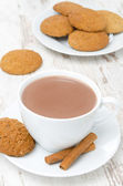 Cup of cocoa with cinnamon and oatmeal cookies in the background — Stock Photo