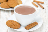 White cup of cocoa with cinnamon and oatmeal cookies — Stock Photo