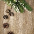 Christmas vintage background (with fir branches and cones) — Stok fotoğraf