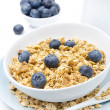 Close-up of homemade muesli, blueberries and milk — Stock Photo