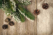 Christmas vintage background (with fir branches and cones) — Stock fotografie