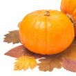 Orange pumpkin on autumn leaves isolated on white — Stock Photo