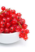 Bowl of red currant isolated on white, close-up — Stock Photo