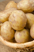 Close-up of new potatoes in the basket, selective focus — Stock Photo