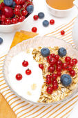 Breakfast - muesli with berries, yogurt, honey and milk, closeup — Stock Photo