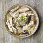 Sopa china de pollo, hongos shiitake y cebolla verde — Foto de Stock