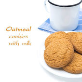 Oatmeal cookies on the plate and mug of milk isolated, close-up — Stock Photo