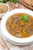 Plate of vegetable soup with lentils, top view — Stock Photo