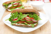 Sandwich with cottage cheese, greens and vegetables — Stock Photo