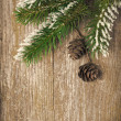 Christmas vintage wooden background with fir branches and cones — Stock Photo #32009783