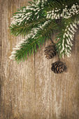Christmas vintage wooden background with fir branches and cones — Stock Photo