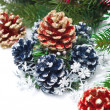 Christmas composition with fir branches and cones — Stock Photo