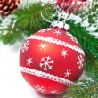 Composition with red Christmas ball and fir branches — Stock Photo