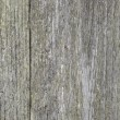 Stock Photo: Gray texture of old wood, horizontal