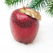 Red apple on snow under fir branch — Stock Photo #32408465