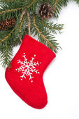 Fir branches and red boots, isolated — Stock Photo