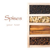 Spices - cinnamon, cloves, black pepper and cardamon — Stock Photo