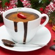 Hot chocolate with chili, cinnamon  — Stock Photo