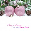 Pink Christmas balls in the snow and spruce branches, isolated — Stock Photo