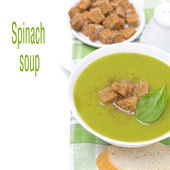 Spinach soup with croutons, close-up, isolated — Stock Photo