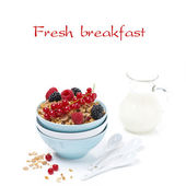 Granola with fresh berries and jug of milk, isolated — Stock Photo