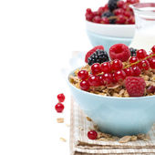 Delicious homemade granola with fresh berries and milk, close-up — Stock Photo