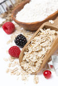 Oatmeal, flour, eggs and berries - the ingredients for baking — Stock Photo