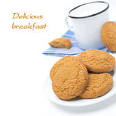 Plate of oatmeal cookies and mug of milk isolated, close-up — Stockfoto