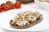 Pan de centeno con atún y queso casero — Foto de Stock
