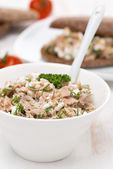 Pate with tuna, homemade cheese and dill in a bowl — Stock Photo