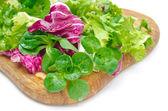 Assorted several kinds of fresh salad (corn, radicchio, lettuce) — Stock Photo