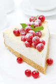 Vanilla cheesecake with red currants, close-up — Stock Photo