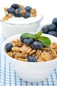 Delicious muesli, fresh blueberries and homemade yogurt — Stock Photo