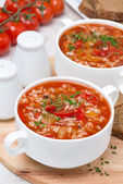 Tomato soup with rice, vegetables and herbs — Stock Photo
