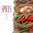Chili, close-up, garlic and dried peppers, isolated — Stock Photo #41254603