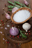Garlic, rosemary, sea salt and spices — Stock Photo