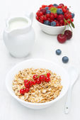 Muesli with red currant, fresh berries and jug of milk — Stock Photo