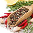 Assorted spices - fresh and dried peppers, garlic, thyme — Stock Photo #41681761