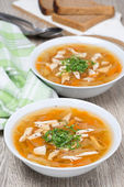 Vegetable soup with chicken — Stock Photo