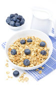 Homemade granola, blueberries and jug of milk, isolated — Stock Photo