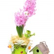 Easter composition with pink hyacinth, birdhouse and eggs — Stock Photo #42197041