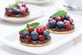 Mini cakes with chocolate cream and fresh berries on the plate — Stock Photo