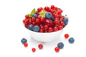 Assorted fresh seasonal berries in a bowl isolated — Stock Photo