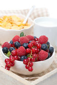Fresh berries, corn flakes and milk on a tray, close-up — Stock Photo