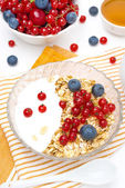 Muesli with berries, yogurt and honey for breakfast, top view — Stok fotoğraf